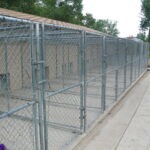 Outdoor Runs for dogs that jump 6 ft fences View 1